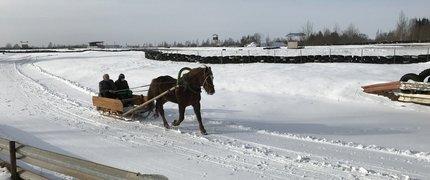 Saimniecības ekskursija un brauciens ar zirgu pajūgiem