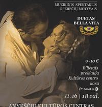 """Muzikinis spektaklis Operetė """"Išsipildžiusios svajonės istorija"""""""