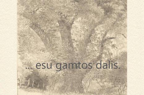 """Liepos 22 d. Algimanto Jono Švėgždos parodos """"…esu gamtos dalis."""" atidarymas"""