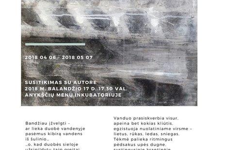 """Susitikimas su parodos """"Tėkmė siluetai"""" autore Lina Vaišnyte"""