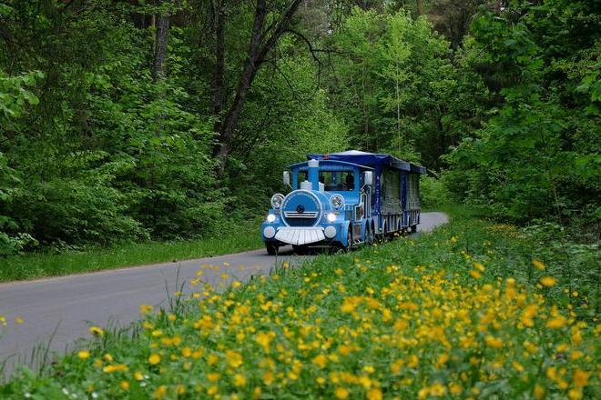 Pramoginis traukinukas