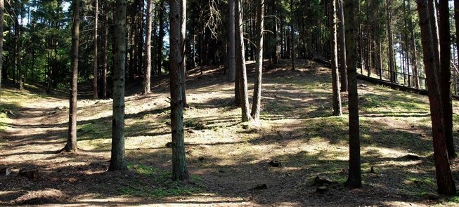 Palatavio piliakalnis –Mindaugo karūnavimo vieta